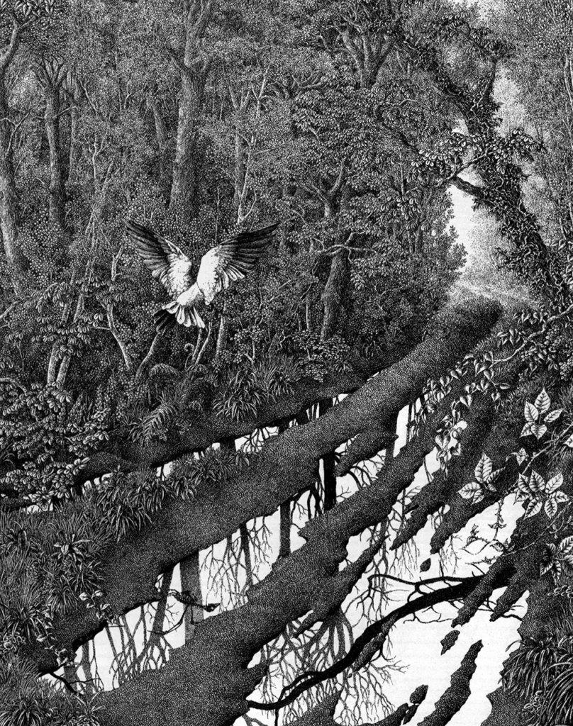 Pluies acides – © Encre de Chine – © Dantec, 1990