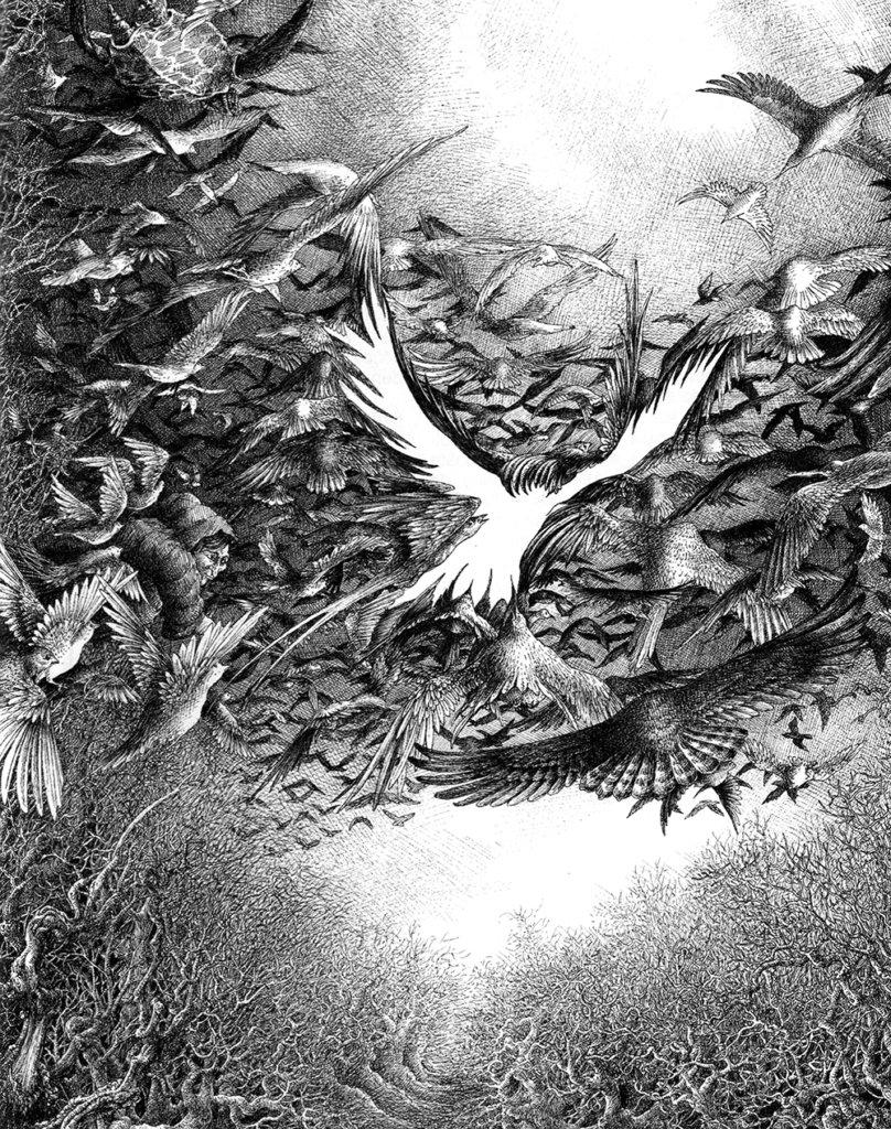 L'Oiseau-Qui-n'Existe-Pas – Encre de Chine – © Dantec