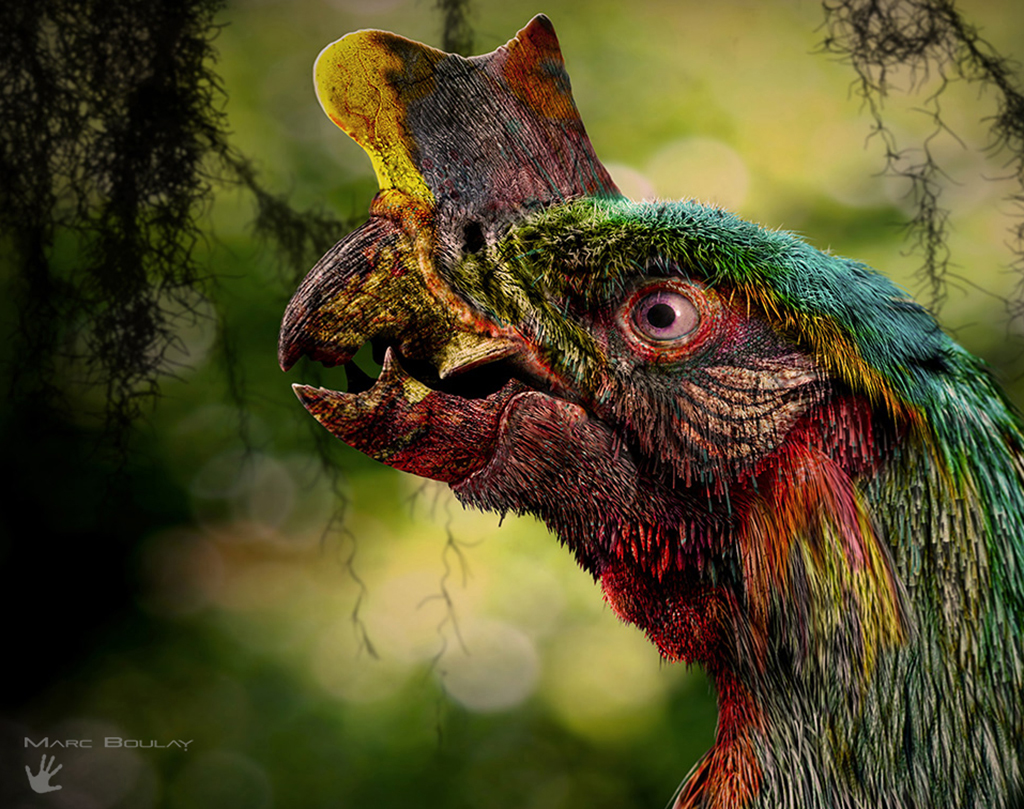 Tyrannornis rex, le perroquet-tyrannosaure — Demain, les animaux du futur — © Marc Boulay et Sébastien Steyer, 2015 — © Éditions Belin, 2015