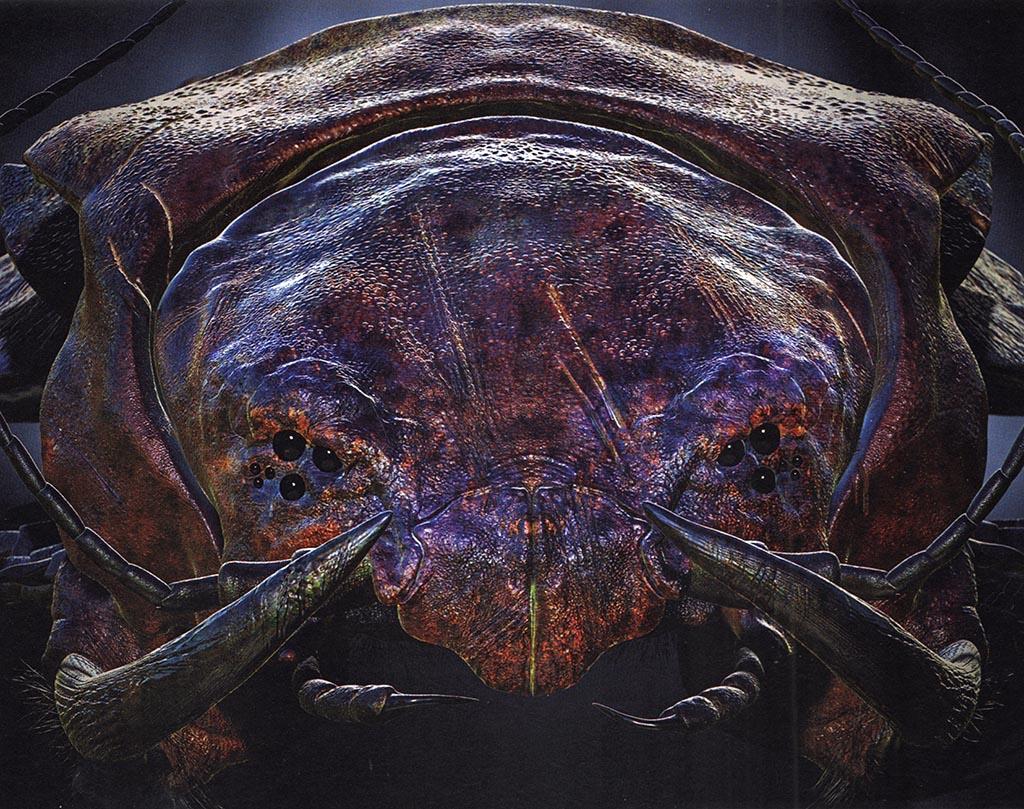 Scolopendra volans, le mille-pattes planeur — Demain, les animaux du futur — © Marc Boulay et Sébastien Steyer, 2015 — © Éditions Belin, 2015